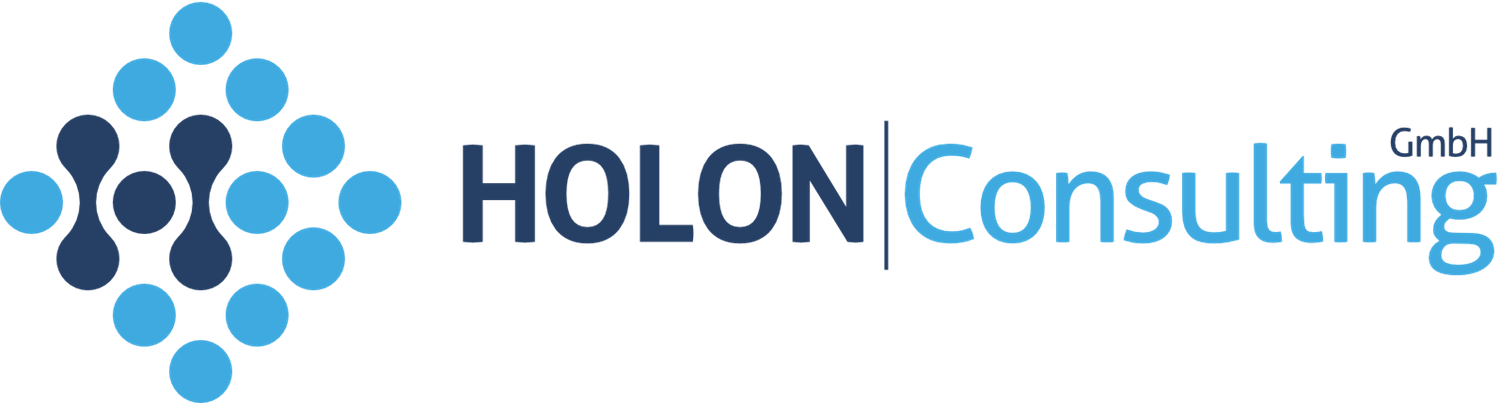 Holon consulting